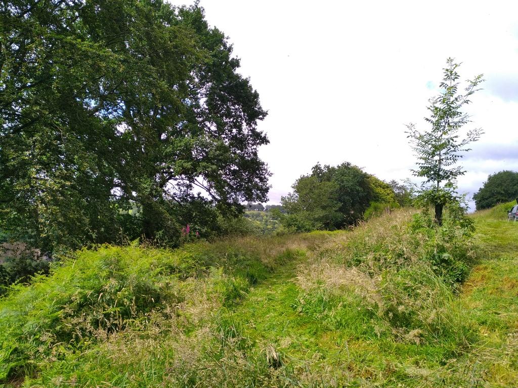 ouverture terrain des crabots a lonlay l'abbaye - Page 2 Img_2015