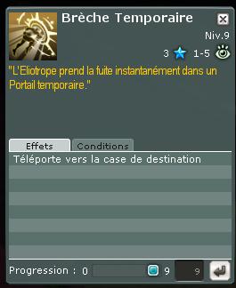 Eliotrope, sorts et spécialités Actif_12