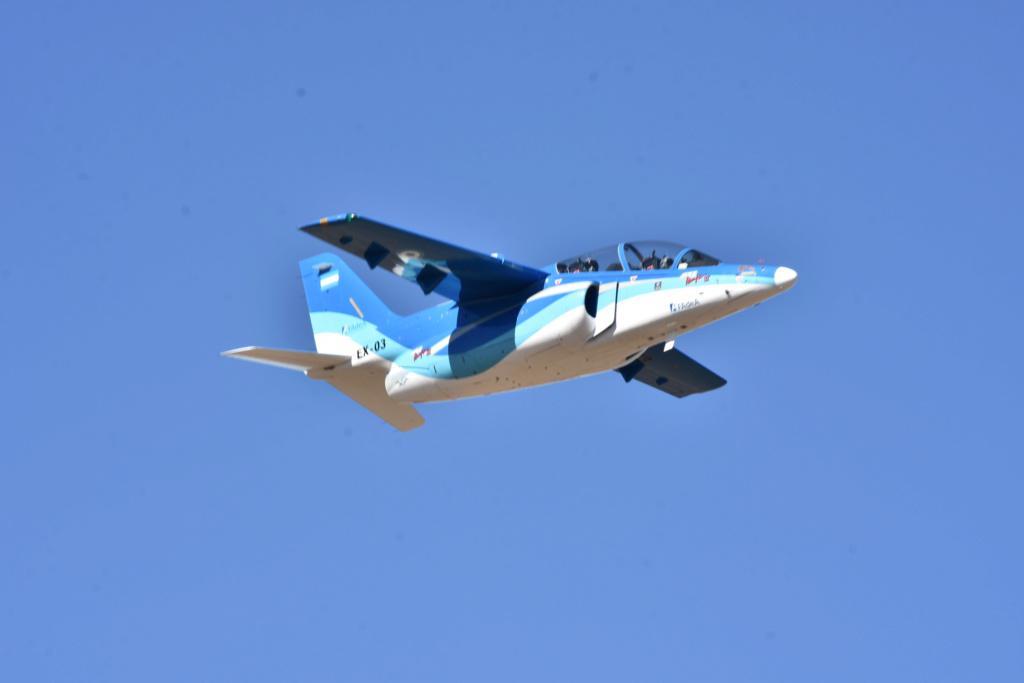 El Gobierno promulgará un decreto que asigna nuevos roles a las Fuerzas Armadas Avizsn10