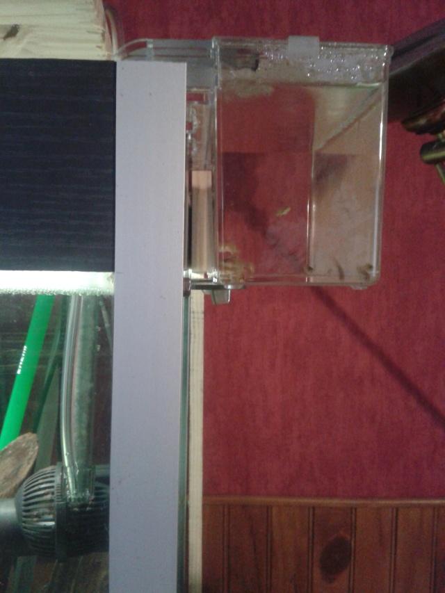breeding box 2l 20141120
