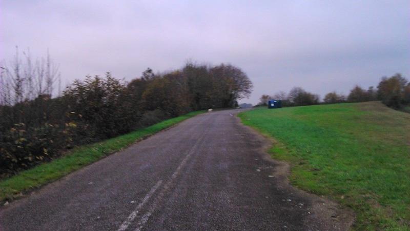 help urgent Ilverin adoptée hier est en fuite sur Le Gavre ( 44 ) a côté de Blain - Page 37 14700810