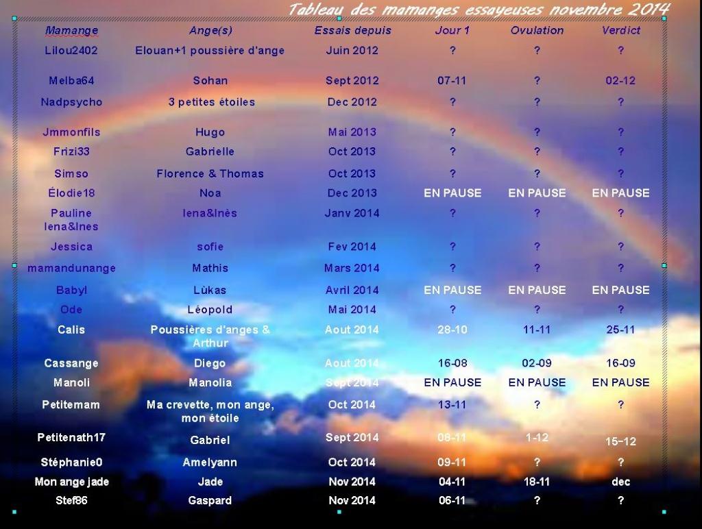 Tableau des essayeuses pour le mois de novembre - Page 2 Captur12