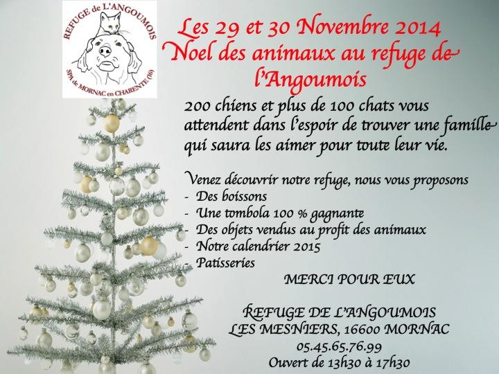 Noel des Animaux les 29 et 30 Novembre 2014 Diapos11
