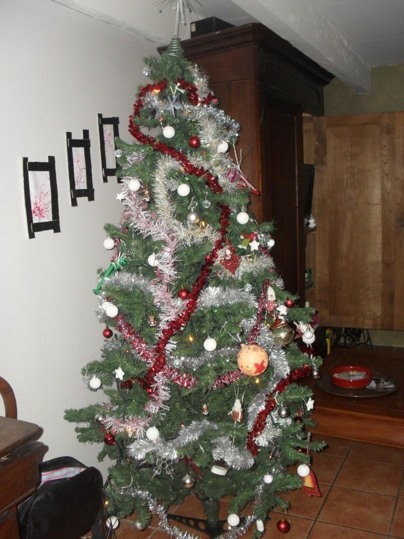 Votre arbre de Noël! Sam_4310