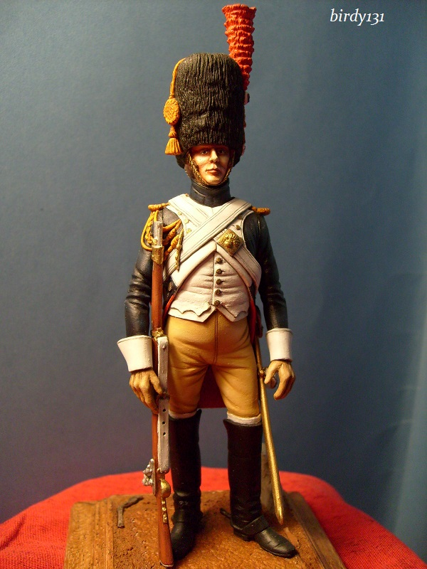 vitrine birdy131 (Ier empire 54 et 90 mm & 14/18 ) Officier de la Jeune Garde (MM) S7302220
