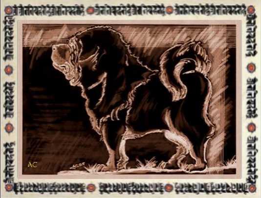 Histoire du Dogue du Tibet  Legend10