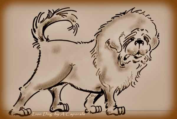Histoire du Dogue du Tibet  Lion_d10