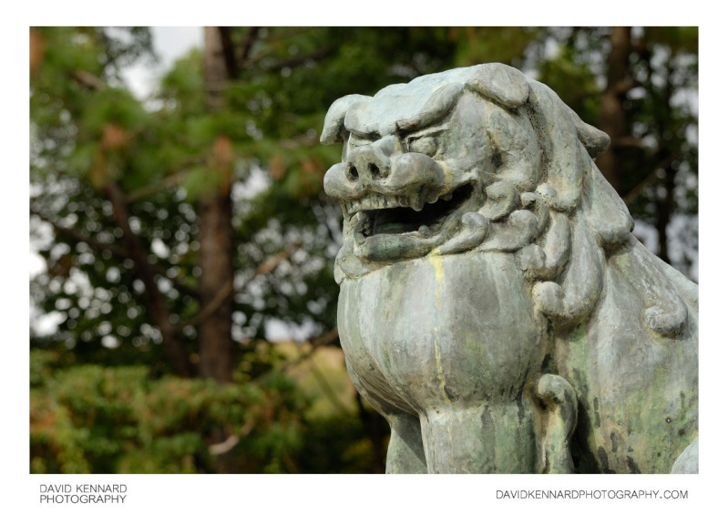 Histoire du Dogue du Tibet  Lion_p10