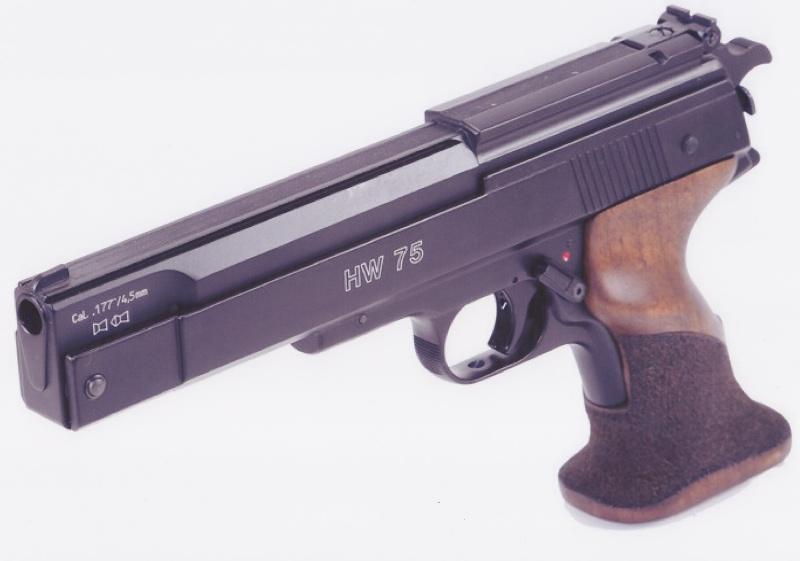 cherche ce qui ce fait de mieux en pistolet a moins de 300 euros Hw_7510