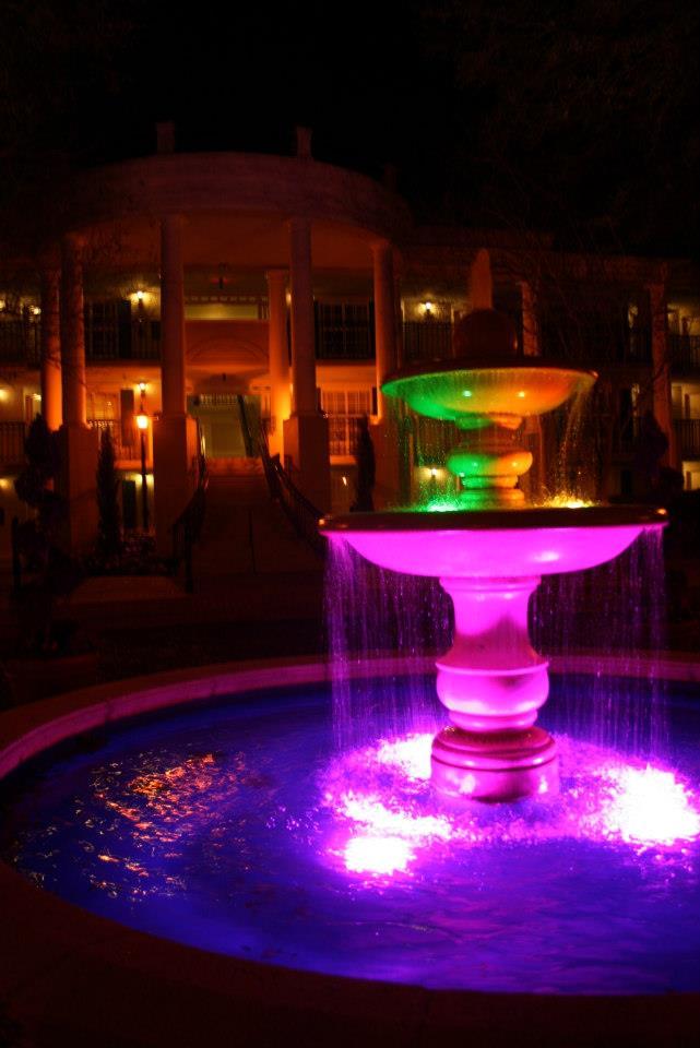 [18-31 octobre 2014] Voyage de noces à Walt Disney World et à Universal - Page 4 11619_10