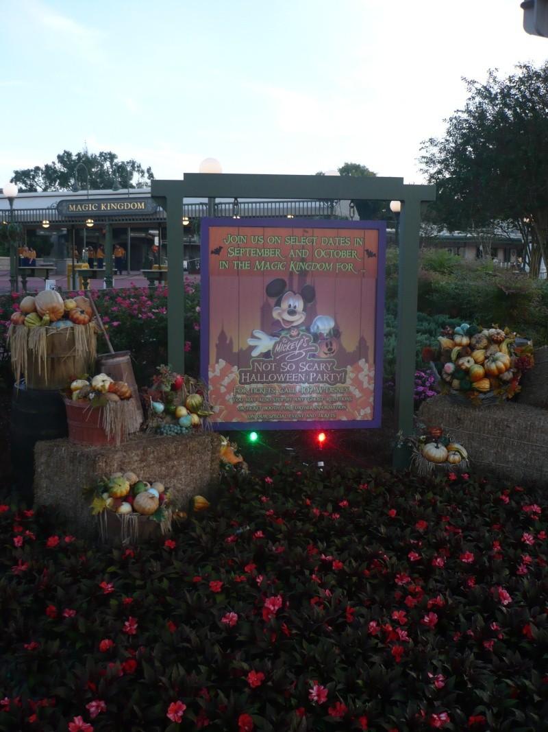 [18-31 octobre 2014] Voyage de noces à Walt Disney World et à Universal - Page 3 P1080711