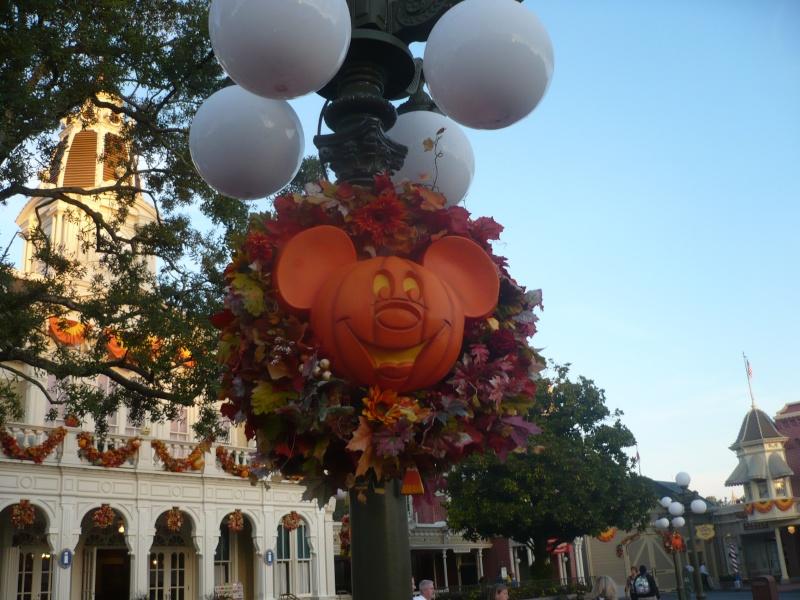 [18-31 octobre 2014] Voyage de noces à Walt Disney World et à Universal - Page 3 P1080712