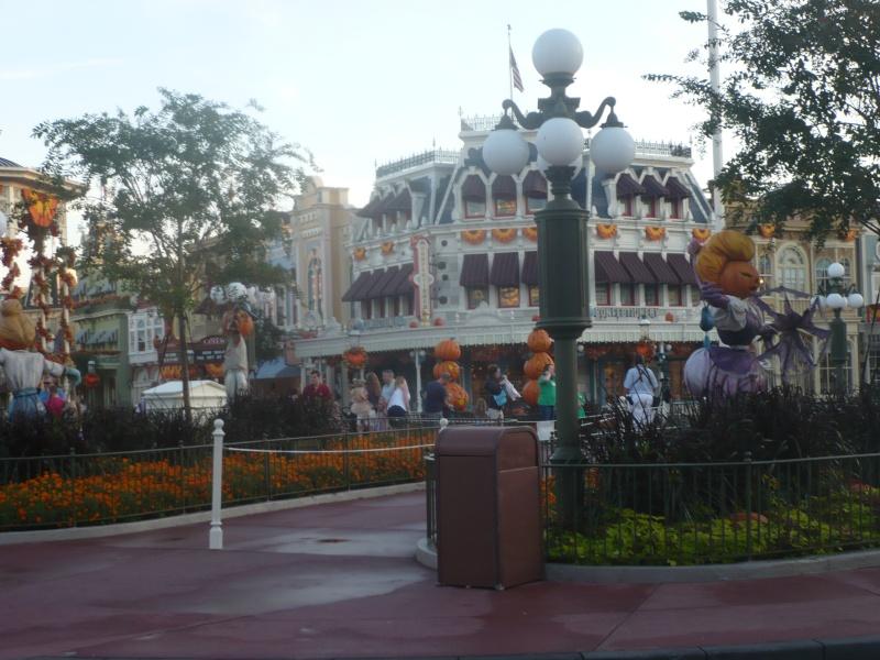 [18-31 octobre 2014] Voyage de noces à Walt Disney World et à Universal - Page 3 P1080713