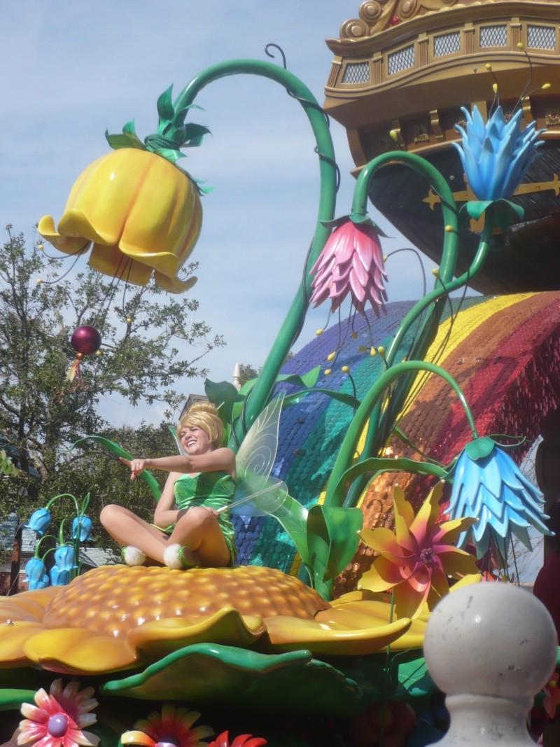 [18-31 octobre 2014] Voyage de noces à Walt Disney World et à Universal - Page 3 P1080752