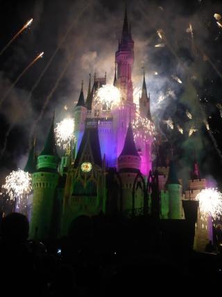[18-31 octobre 2014] Voyage de noces à Walt Disney World et à Universal P1090710