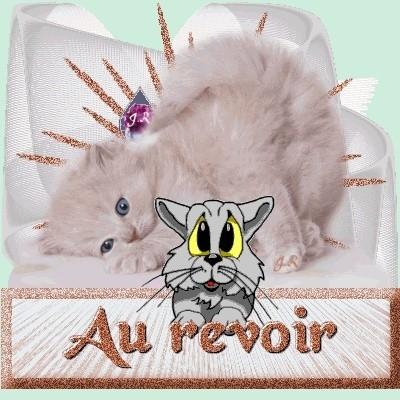 Au revoir les chatons 7fdd3a10