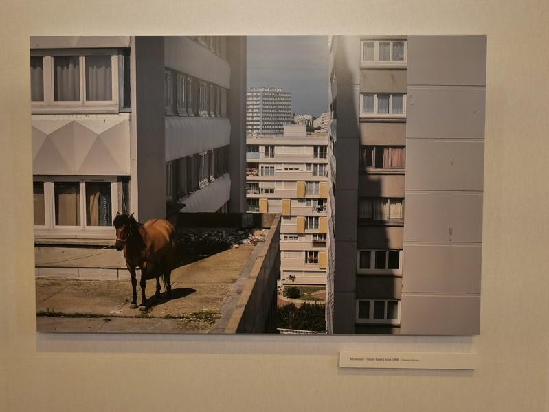 SALON DE LA PHOTO 2014 - Invitation gratuite P1350019