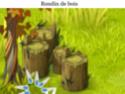 Indices Chasse aux trésors et Portail. Rondin10