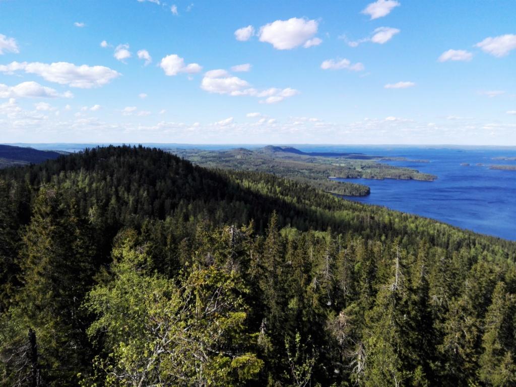 Voyage en stop en Norvège Img_2123