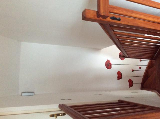 Escalier repeint et montée d'escalier relooke Descen10