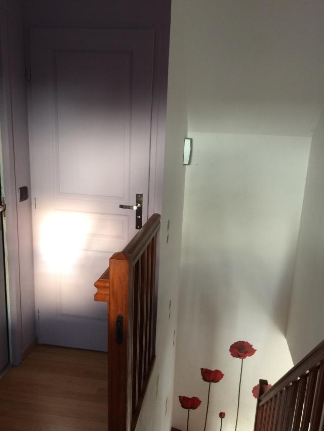 Escalier repeint et montée d'escalier relooke Img_0311