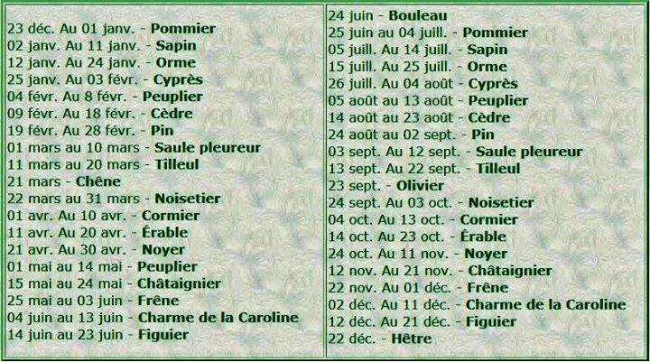 astrologie - Astrologie Celtique  10701910