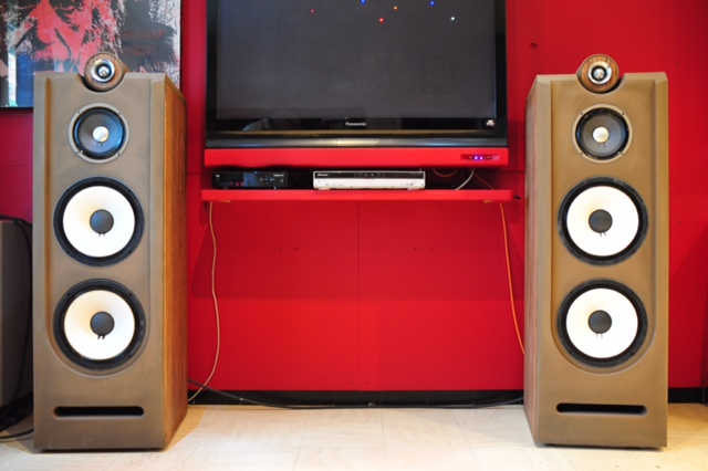 Reference Audio c115 MKII ,  full JBL AlNiCo Dsc_3112