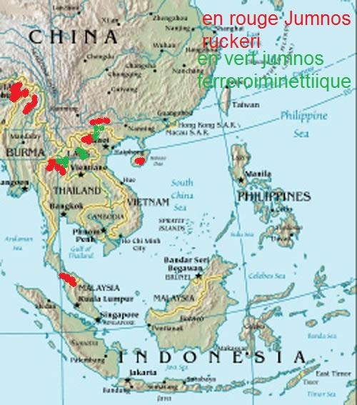 Jumnos d'Asie Cartog10