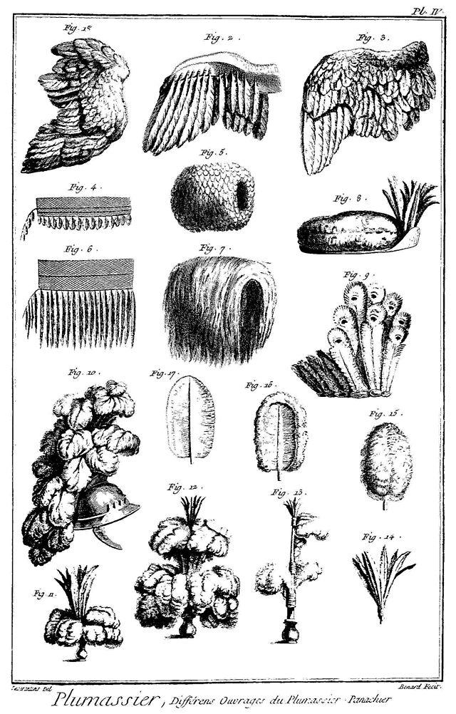 Les plumassiers, ces artisans indispensables aux modes du XVIIIème siècle 640px-11