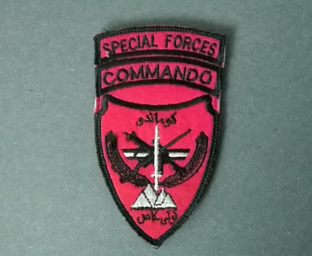 Afghan National Army Commando Patches - Page 6 Wp_20111