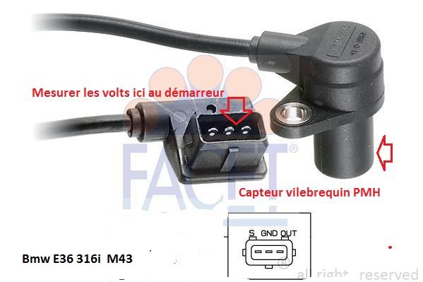[ BMW E36 316i.auto/ compact an 1994 ] probleme allumage et pompe a essence 12_m4310