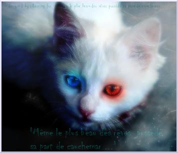 Même le plus beau des rêve possède sa part de cauchemar... [PV Ange Céleste] Ryve11
