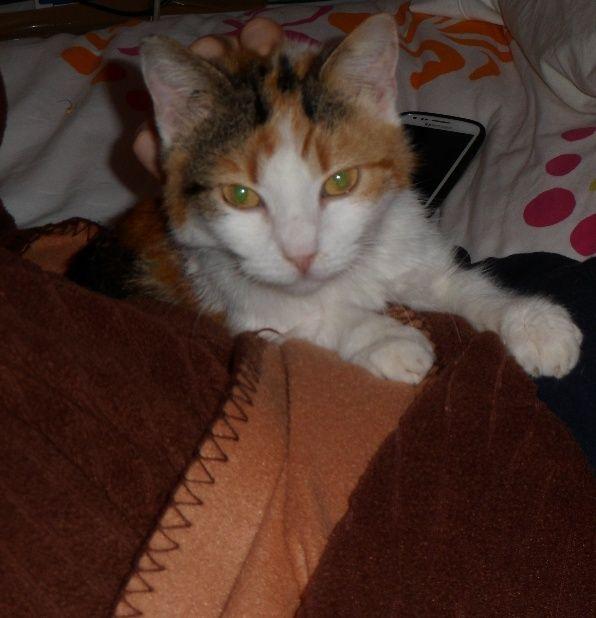 Jinja devenue Lola Pimagi12