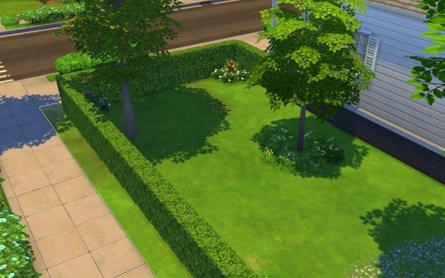 [Débutant] Création d'un jardin avec terrasse agréable 24-11-24