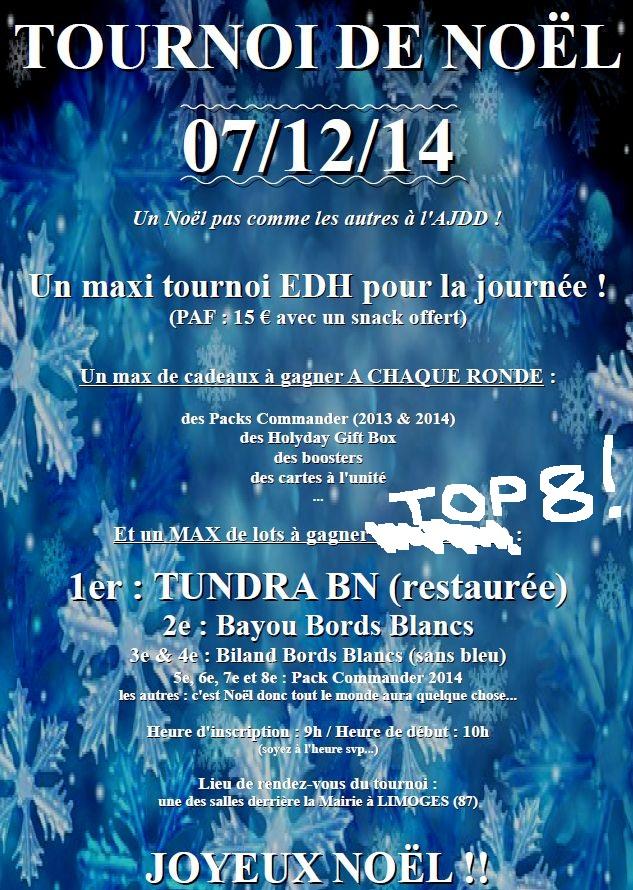 Limoges / 7 décembre 2014 / Tournoi EDH de Noël Page211