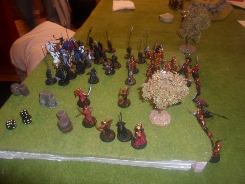 Rpport de bataille: Embuscade au Conseil Blanc Sam_3617