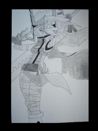 Dragons et Dragonniers Missiz11
