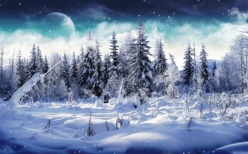 Féerie d'hiver (images inspiratrices décembre 2014 - archivage des textes) Neige10