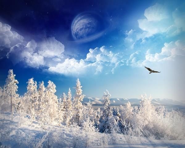 Féerie d'hiver (images inspiratrices décembre 2014 - archivage des textes) Neige_10