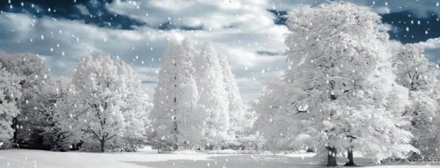 Féerie d'hiver (images inspiratrices décembre 2014 - archivage des textes) Paysag10