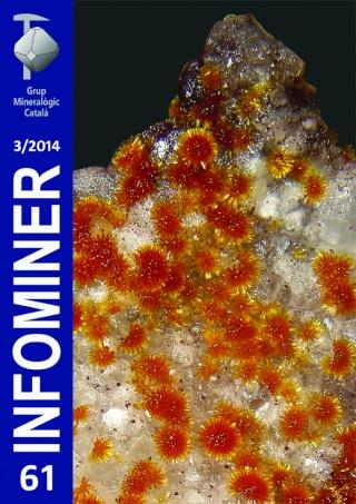 Nou Infominer 61 (3/2014) Infomi10