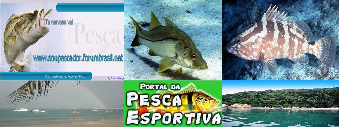 WWW.SOUPESCADOR.FORUMBRASIL.NET