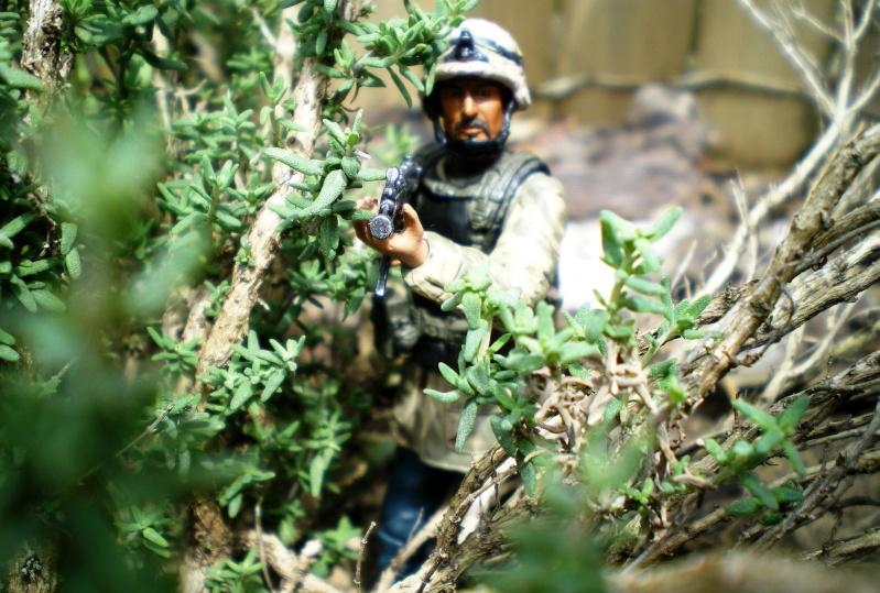 Selvaland, mes soldats en action - Page 4 Imgp0810