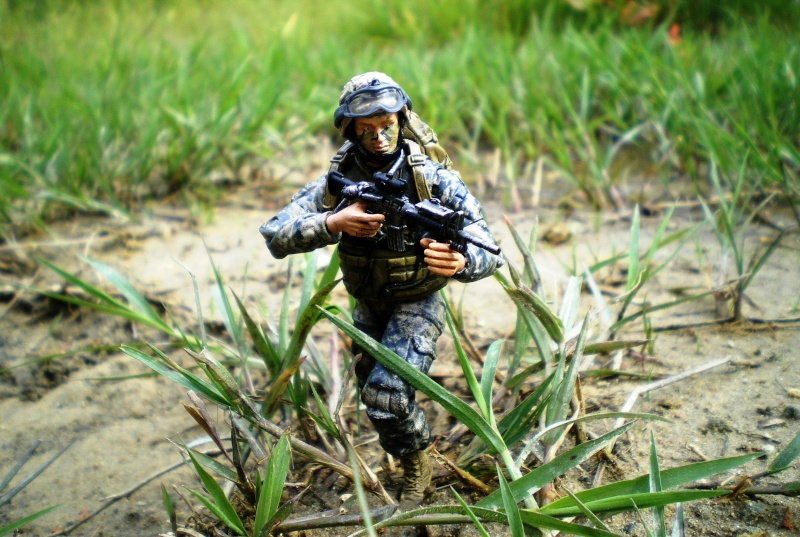 Selvaland, mes soldats en action - Page 4 Imgp2812