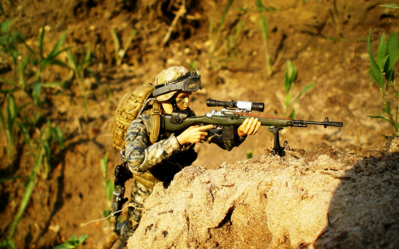 Selvaland, mes soldats en action - Page 4 Imgp2813