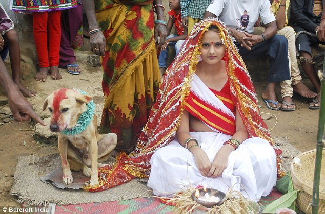 Indian Girl Marries Dog To Get Rid Of Evil Spirit 9cvzpj10