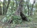 [Abri] Hutte de camp de base façon tchoum sibérien - Page 2 Constr10