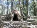 [Abri] Hutte de camp de base façon tchoum sibérien - Page 2 Hutte110