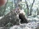 [Abri] Hutte de camp de base façon tchoum sibérien - Page 2 Hutte211