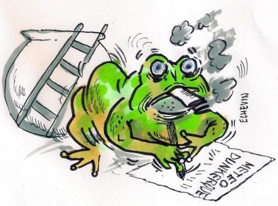 CR balade du dimanche 16 novembre 2014 Grenou10